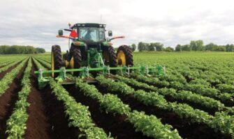 Potato Farms