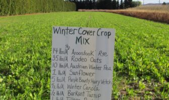Soil Solutions and Cover Crops