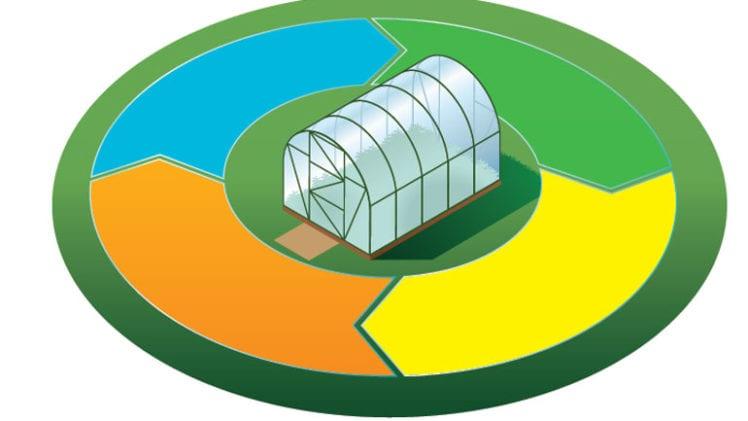 Choosing a medium for greenhouse success