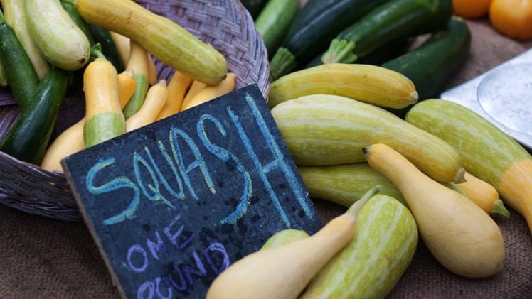New Summer Squashes Add Variety