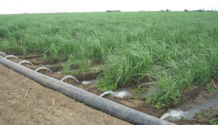 Protecting the Ecosystem While Increasing Water Supply Reliability
