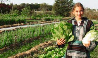 URBAN FARMING OPERATION THRIVES