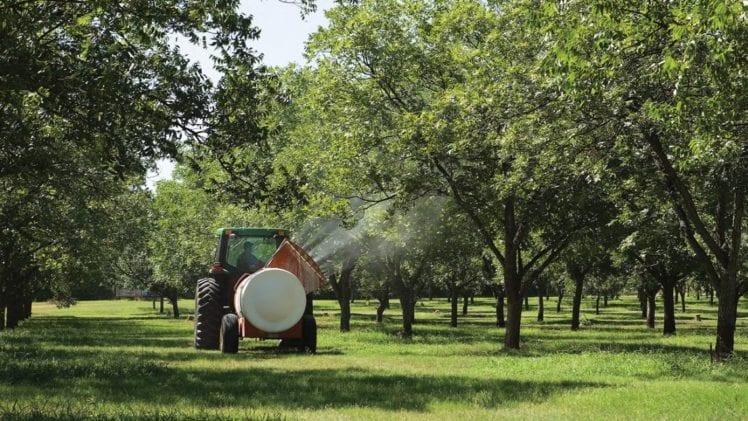 Fertilizing Organic Crops