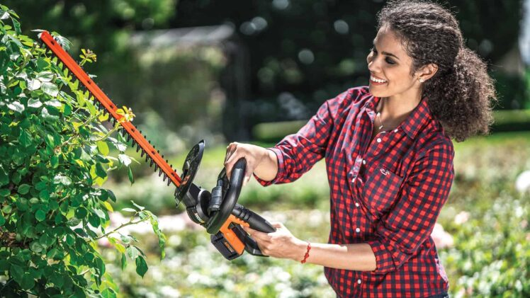 Best battery hedge trimmer