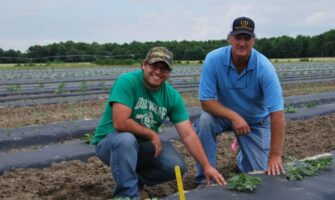 How to Successfully Grow Seedless Watermelon