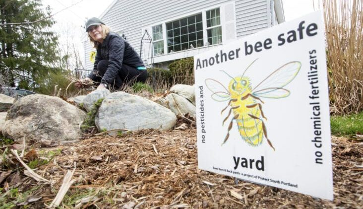 What do you know about Bee Safe Pesticides?