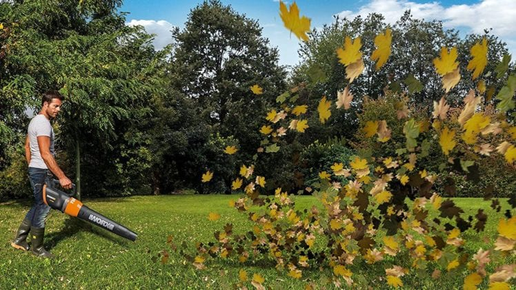 Why You Should Get A Cordless Leaf Blower