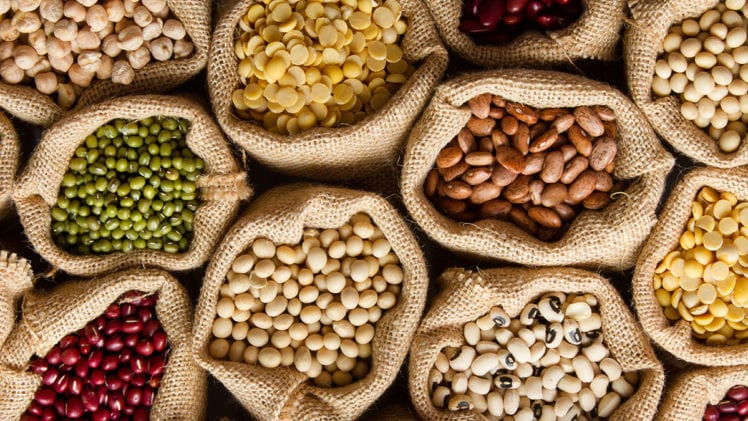 Few Superfoods You Should Include In Your Diet