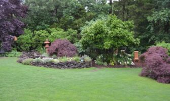 Hot to Make Your Lawn Ideal