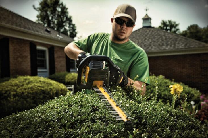 DeWalt Cordless Hedge Trimmer