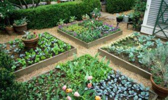 Creative Ideas for Your Garden