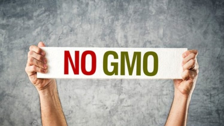 GMO Battle