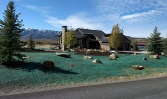 Why You Need Hydroseeding And Landscaping Services